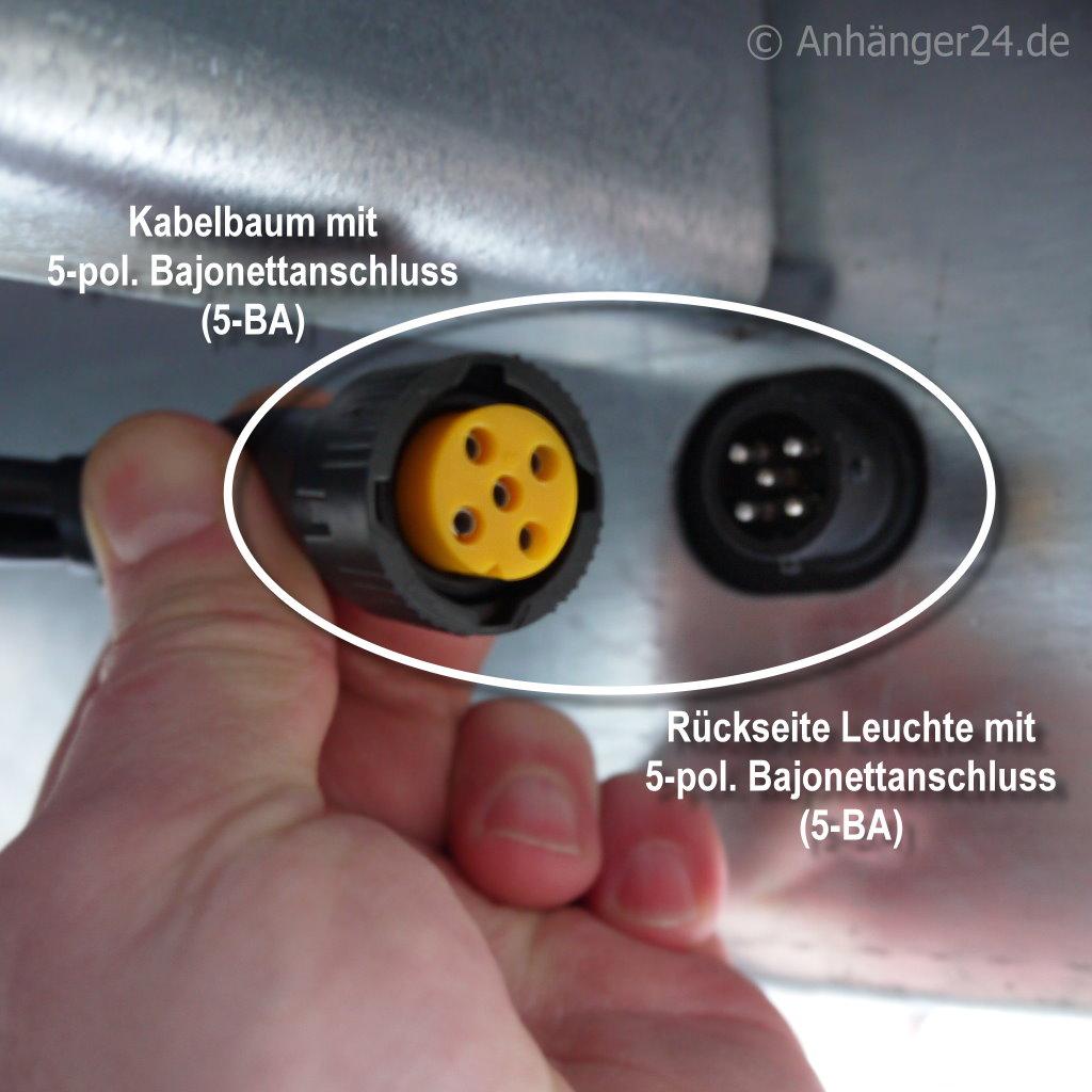 A24) Bajonettverbinder 5-poilg grün rechts Anhänger24-SHOP